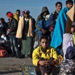 rassegna stampa svedese assosvezia politica migratoria flussi scorrevoli