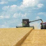 rassegna stampa svedese assosvezia semina raccolta siccità situazione drammatica Skåne