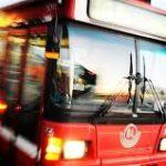 cercasi autista bus conducenti agenzia trasporti rassegna stampa svedese