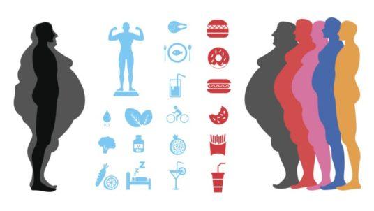 apocalisse lipidi obesità sovrappeso popolazione svedese rassegna stampa