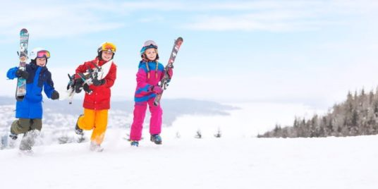 manna cielo neve impennata vendite rassegna stampa svedese