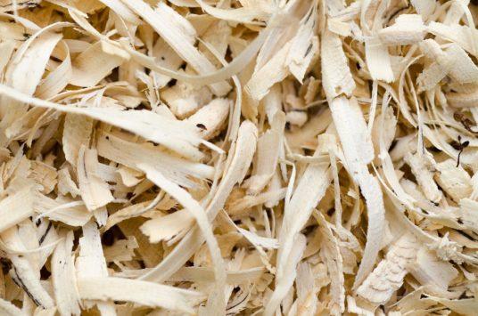 dieta fibre alimentari dal legno alta digeribilità cellulosa