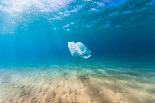 nuova tassa sacchetti plastica microplastiche svezia governo